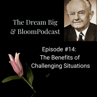 Episode #14: The Benefits of Challenging Situations