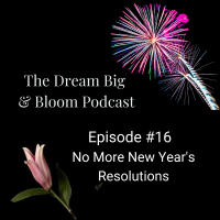Episode #16: No More New Year's Resolutions